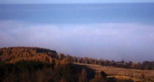 Ceață pe dealul Feleacului